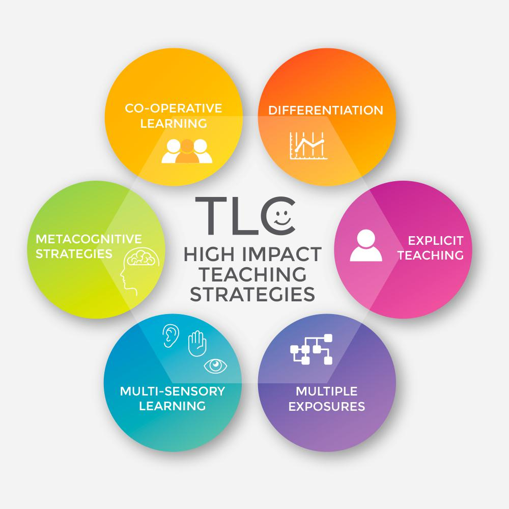 The Literacy Collective High Impact Strategy